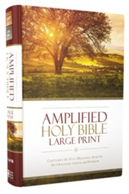 Amplified Large-Print Thinline Bible, hardcover