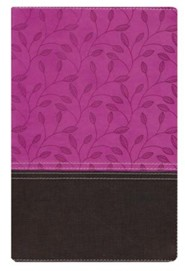NIV Zondervan Study Bible, Imitation Leather, Pink/Brown Indexed