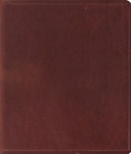 ESV Journaling Bible, Brown Cowhide