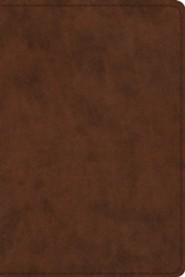 ESV Study Bible, Personal Size, TruTone Imitation Leather, Brown