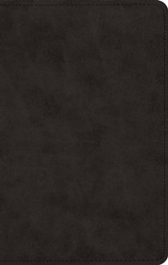 ESV UltraThin Bible--soft leather-look, black