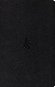 ESV Premium Gift Bible--soft leather-look, midnight with flame design