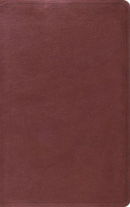 ESV Value Thinline Bible--soft leather-look, burgundy