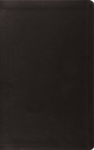ESV Value Thinline Bible--soft leather-look, black