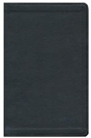 ESV Value Thinline Bible--soft leather-look, coffee