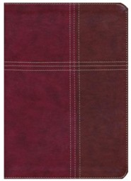 KJV Cross Reference Bible, Imitation Leather