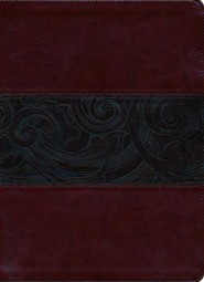 HCSB Large Print Study Bible, Mahogany LeatherTouch