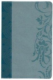 HCSB Study Bible for Women, Large-Print Edition Soft Leather-look, Teal/sage (indexed)