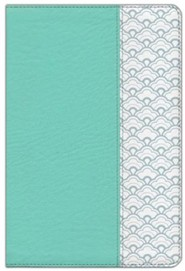 HCSB Giant Print Reference Bible--soft leather-look, mint green
