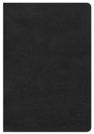 HCSB Large Print Ultrathin Reference Bible, Black LeatherTouch, Thumb-Indexed
