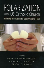 Polarization in the US Catholic Church: Naming the Wounds, Beginning to Heal