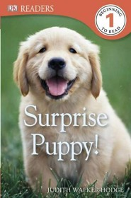 DK Reader Level 1: Surprise Puppy