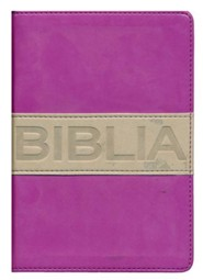 NVI Santa Biblia, ultrafina compacta, colleccion contempo, Italian Duo-Tone, Purple/Gray