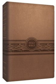 MEV Personal-Size Large-Print Reference Bible--imitation leather, brown