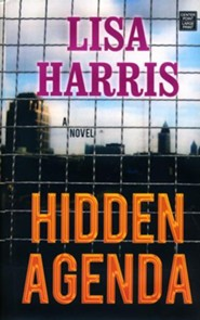 Hidden Agenda: Southern Crimes Large Print