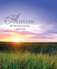Alleluia! Easter Sunrise Bulletin 2013, Large (Package of 50)  -