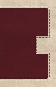 KJV UltraSlim Bible--soft leather-look, ivory/cranberry