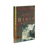 King James Version Outreach Bibles - Slightly Imperfect