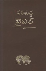 Telugu Bible-Easy-To-Read, Vinyl, Dark Red