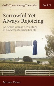 God's Touch Among the Amish Book 3