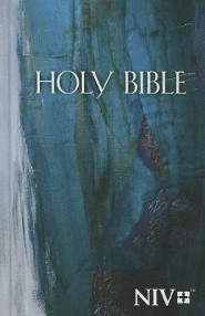 NIV Economy Bible--hardcover, blue