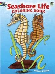 Seashore Life Coloring Book