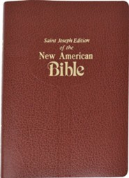 St. Joseph, NAB Gift Edition, Medium Size, Brown Imitation Leather     -