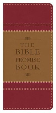 Bible Promise Book, Red & Tan, KJV