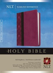 NLT Slimline Reference Bible, soft imitation leather, rich raspberry/dark brown
