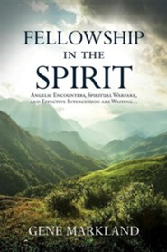Fellowship in the Spirit: Angelic Encounters, Spiritual Warfare, and Effective Intercession Are Waiting...
