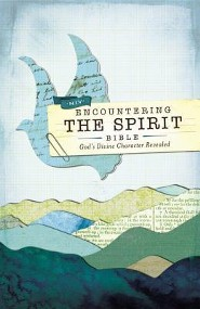 NIV Encountering the Spirit Bible: Discover the Power of the Holy Spirit, Hardcover, Jacketed Printed  - 