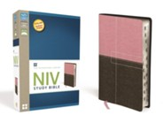 NIV Study Bible--soft leather-look, berry creme/chocolate