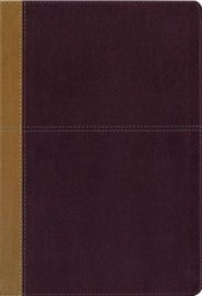 KJV and Amplified Side-by-Side Bible, Italian Duo-Tone, Camel/Rich Red, Large Print  -