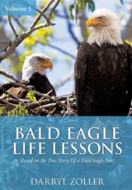 Bald Eagle Life Lessons