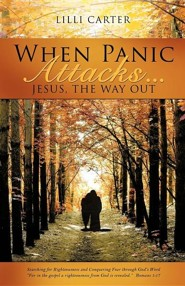 When Panic Attacks ...  -     By: Lilli Carter