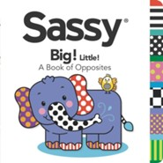 Big! Little!: A Book of Opposites