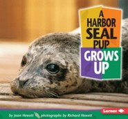 A Harbor Seal Pup Grows Up  -     By: Joan Hewett, Richard Hewett