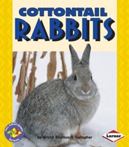Cottontail Rabbits  -     By: Kristin E. Gallagher