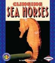 Clinging Sea Horses  -     By: Judith Jango-Cohen