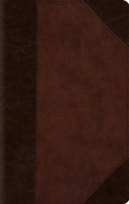 ESV Large Print Compact Bible (TruTone, Brown/Walnut, Portfolio Design), Leather, imitation  -
