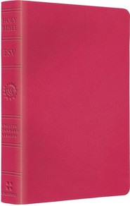ESV Kid's Compact Bible (TruTone, Pretty Pink), Imitation Leather
