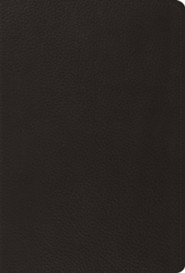 ESV The Psalms, Black Top Grain Leather
