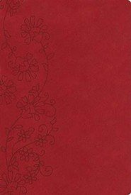 KJV Personal Size Reference Bible--soft leather-look, ruby (indexed)