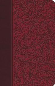 Reina Valera 1960 Biblia Clasica Edicion Especial: Rubi
