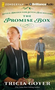 Promise Box - unabridged audiobook on CD