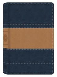The KJV Study Bible - Illustrated Edition, Imitation Leather, Blue/Tan