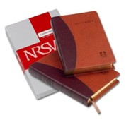 NRSV Popular Text Anglicized Bible, Imitation leather, tan/burgundy