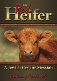 716472: Red Heifer: A Jewish Cry for Messiah