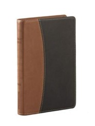 NVI Ultrafina Compacta Dos Tonos Italiano Caf&#233/Negro, NVI Ultrathin Compact Bible Imitation Leather Black/Coffee