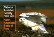 National Audubon Society Pocket Guide to North American Birds of Prey